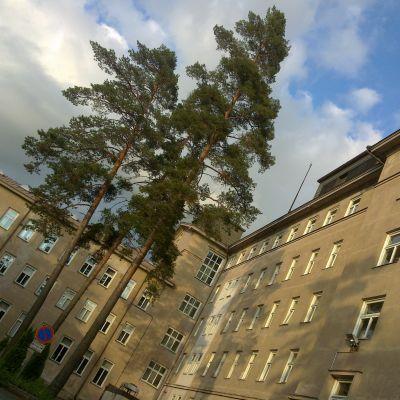 Baksidan av huvudubyggnaden vid Mjölbolsta sjukhus, huvudbyggnaden.