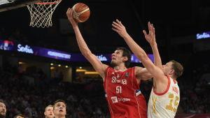 Boban Marjanovic, basketspelare