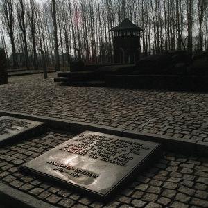 Muistolaatta Auschwitz Birkenaussa surmatuille