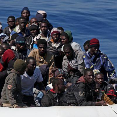 En del av de 200 båtflyktingar som italienska kustbevakningen räddade