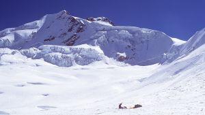 Vuorikiipeilijät pystyttävät telttaa Campo Argentinolle Huyana Potosi -vuoren lumikentällä Boliviassa 1997.