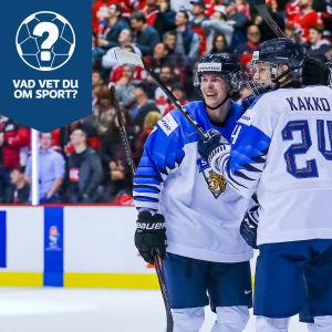 Finlands juniorer firar ett mål.