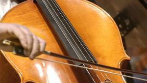 Cellostråken dras över cellon