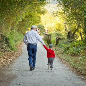 En farfar eller morfar håller sitt barnbarns hand medan de promenerar på en gångväg omringad av gröna träd och natur.