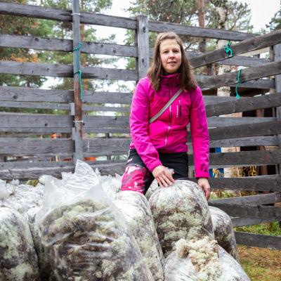 Poronhoitaja JonnaAlava nostaa jäkälää täynnä olevia isoja kirkkaita muovipusseja
