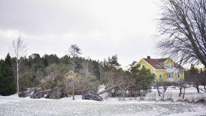 Kullfallna träd vid en gårdsplan på Åland efter Stormen 2.1.2019