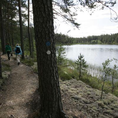 Kaunis ja kirkasvetinen erämaajärvi.
