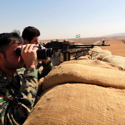 Kurdiska peshmergastyrkor har intagit flera byar omkring 30 kilometer öster om Mosul under det senaste dygnet