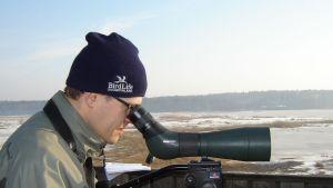 Fågelskådare med kikare