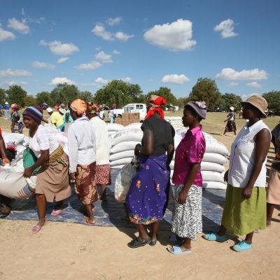Människor i Harare, Zimbabwe, köar för WFP:s mathjälp i form av majsmjöl.