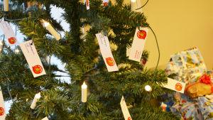 Närbild på en julgran där dethänger julljus och små lappar med barns kön och ålder.