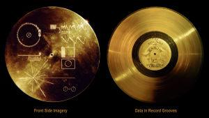 Kuva Voyager-luotaimiin kiinnitetystä äänilevystä