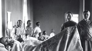 Kvinnos ligger i sina sängar i en sjukhussal år 1905