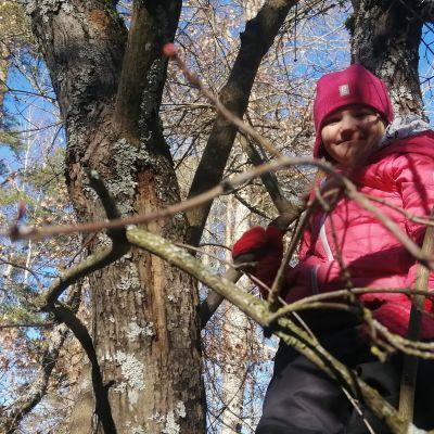 Maiju Halme on kiivennyt puuhun välitunnilla.