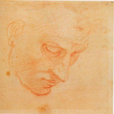 Studie av mansansikte för Syndaflodsscenen i Sixtinska kapellet, 1509–1510