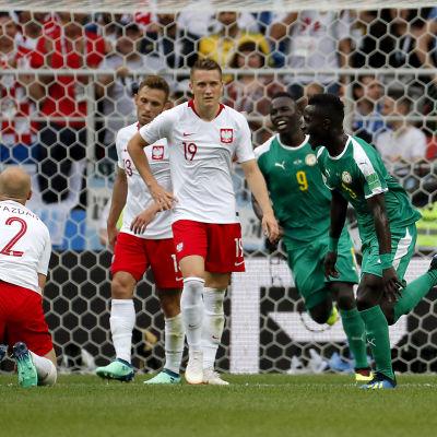 Senegal firar mål.