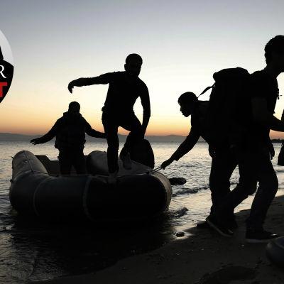Syriska flyktingar stiger i land på ön Kos i Grekland.