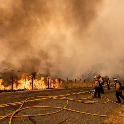 Palomiehet sammuttivat maastopaloa Kalifornian osavaltiossa Yhdysvalloissa 19. elokuuta 2020.