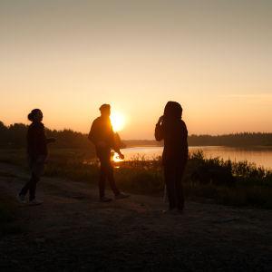 Solen går aldrig ner över Sodankylä filmfestival.