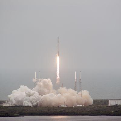 Raketen SpaxeX Falcon 9 vid en uppskjutning från Cape Canaveral 2014.
