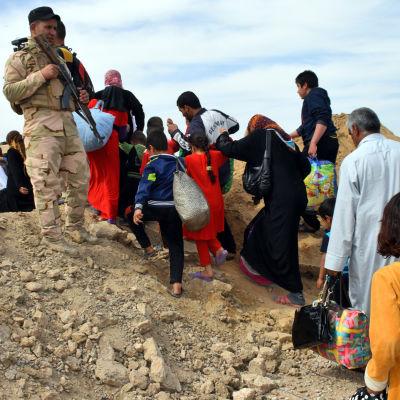Den irakiska armén har evakuerat civila från områden kring Falluja, men endast 700 personer har lyckats fly från Falluja sedan offensiven inleddes i slutet av maj