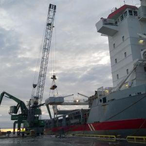 Sågvaror lastas i Kaskö hamn.