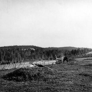 I. K. Inhan valokuvassa Valkejärven talo Jäähdyspohjassa Virroilla