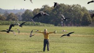 Nainen seisoo ruohokentällä selin kameraan kädet levällään, ja ympärillä lentää isoja mustia lintuja.
