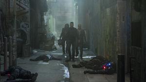 Ett gäng skrukar arbetar sig fram genom en mörk gränd full av döda kroppar.