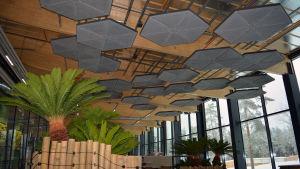 Akustikplattor är en del av interiören i Pandahuset vid Etseri djurpark.