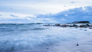 Naturen i Hangö inspirerar fotografer