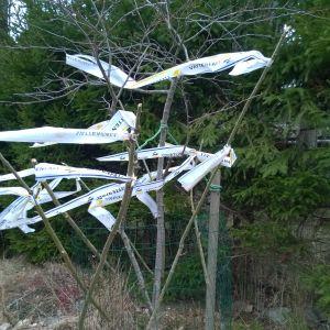 Annika Nylund tipsar om en fungerande rådjursskrämma. Hon har knutit remsor av prasslig plast på käppar som stuckits in i ett gallerstängsel som är virat kring plommonträdet och kaneläppelträdet.