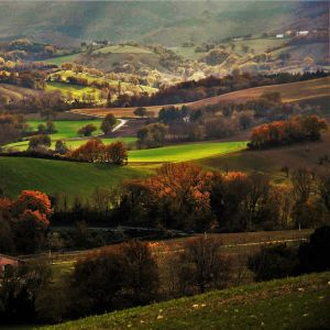 Bild på färgsprakande landskap med dalar och små vägar. Trädens löv är brunorange och ängarna är gröna.