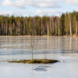 Saarijärvi Kintulammen retkeily- ja luonnonsuojelualueella.
