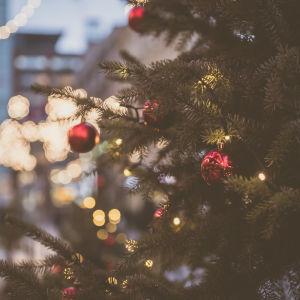 Julgran på gatan