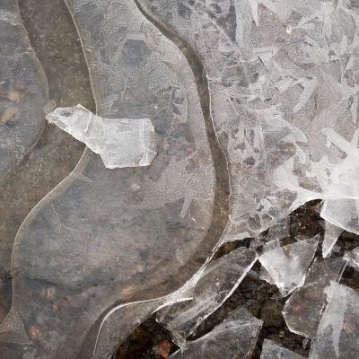 rikkonainen jää