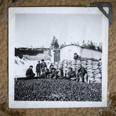 Ihmisiä kiipeilee perunasäkkien päällä Saksan armeijan perunavarastolla Härmässä 1942.