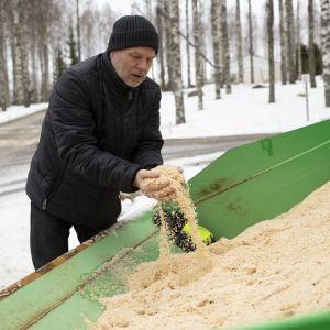 Kaavilainen Olavi Penttinen nostaa sahajauhoa traktorin kauhasta.
