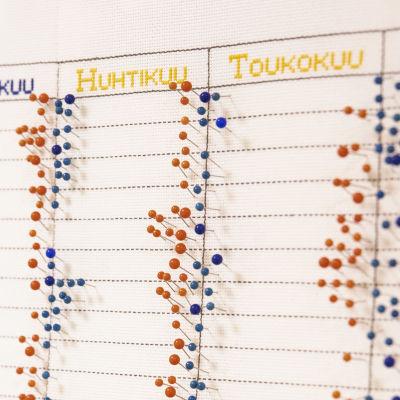 Sini- ja punasävyisiä nupeja syntyneiden kalenterissa Keski-Suomen keskussairaalan synnytysosaston seinällä.
