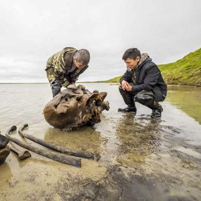 Kaksi miestä kyykistelee luiden äärellä rantavedessä