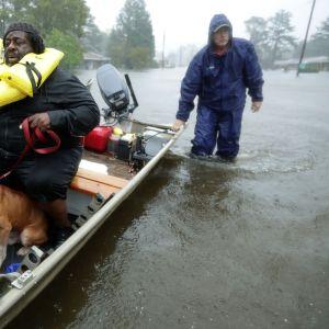 Frivilliga hjälparbetare evakuerar invånare och deras sällskapsdjur (här en hund) i New Bern, North Carolina