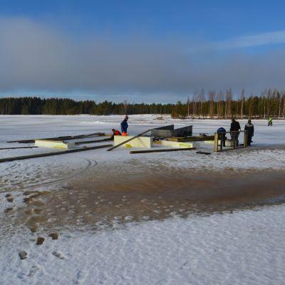 Kyrkösjärven melontakeskuksen jättilaituri rakentuu jään päälle. Jäiden sulamisen jälkeen se uitetaan oikealle paikalleen.