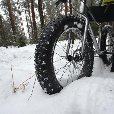 Läskipyörän rengas