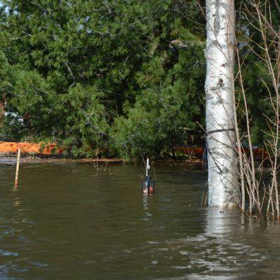 Kyrönjoen tulva katkoo teitä Mustasaaren Tuovilassa.