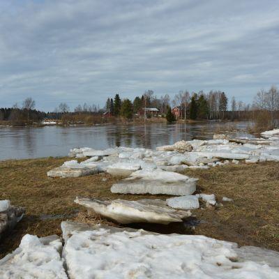 Tulva keväällä 2018