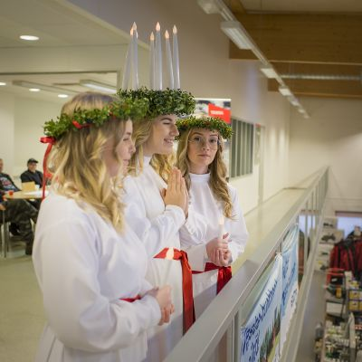 Lucia ja kynttiläneidot laulamassa