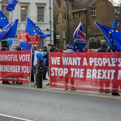Protester mot brexit i London.