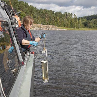 Ympäristökeskuksen tutkija ottaa vesinäytettä Laatokasta.