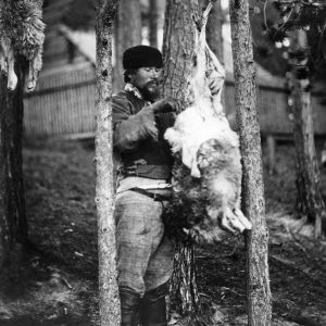 I. K. Inhan valokuvassa uhripokko nyljettävänä kalmalehdossa