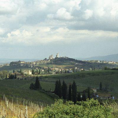 Kumpuileva toskanalaismaisema, taustan kukkulalla näkyy San Gimignanon pikkukaupungin tornirakennukset.